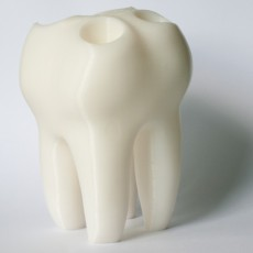 Picture of print of The Big Tooth
