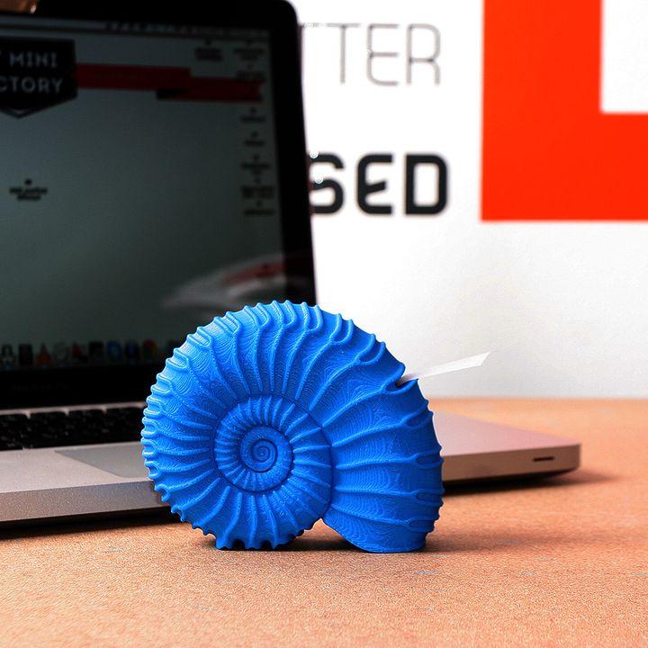 Shell Adhesive Tape Holder