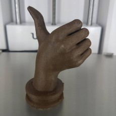 Picture of print of Thumbs Up!