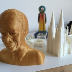 Picture of print of Nelson Mandela