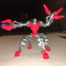 Picture of print of Bionic Robot
