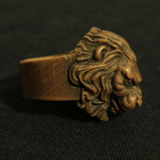 Picture of print of Lion Ring for comp