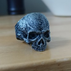 Picture of print of Skull Ring This print has been uploaded by Ethan Rayle