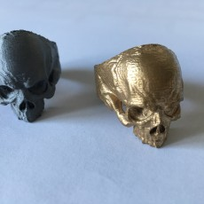 Picture of print of Skull Ring This print has been uploaded by Thomas Wanner