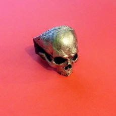 Picture of print of Skull Ring This print has been uploaded by Hazeofflames