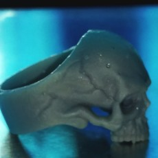 Picture of print of Skull Ring This print has been uploaded by Anthony Burdick