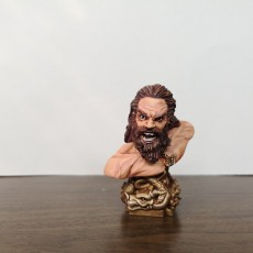 Picture of print of Viking Bust