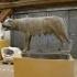 The Capitoline wolf image