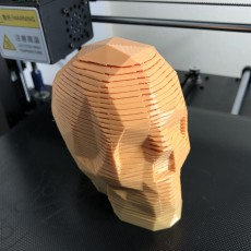 Picture of print of Springo Skull