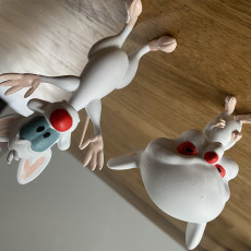 Picture of print of Pinky and the Brain