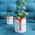 Paintpot Planter image