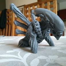 Picture of print of Alien - Xenomorph