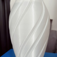 Picture of print of Spin Vase 3 This print has been uploaded by A. Cerisier