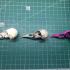 American Crow Skull print image