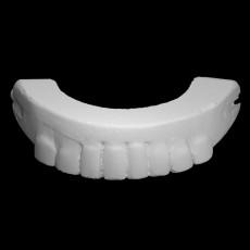 George Washington's False Teeth - Top Half