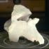 Deer thoracic vertebra image