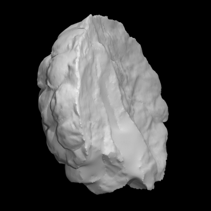 Figurine Head, Back