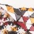 Triangle Mesh Fabric image