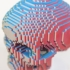 Voxelized Skull image