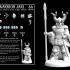 Warrior Jarl (18mm scale) image