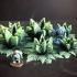 ... more Alien Flora (15mm scale) image