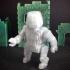 Zee (RoboMorph) image