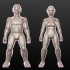 Sculptris Dummies: Elves primary image