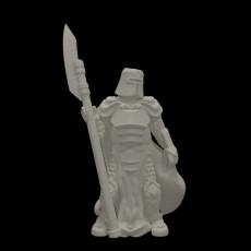 Knight w/Polearm (28mm/Heroic scale)