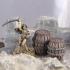 Delving Decor: Medieval Barrels (28mm/Heroic scale) image