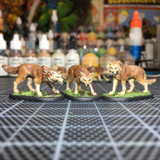 Picture of print of Wolf Pack - 32mm scale