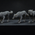 Wolf Pack - 3 models - PRESUPPORTED - 32mm scale image