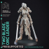 Two Blade - Female Orc Commander - PRE SUPPORTED - 32 mm scale miniature image