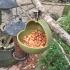WIld Bird Feeder image
