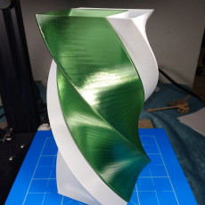 Picture of print of Dual Twist Vase
