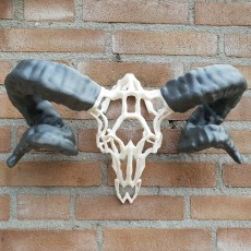Picture of print of Wired Ram Skull