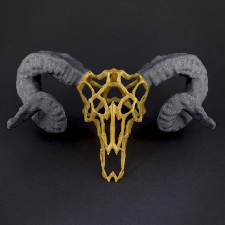 Wired Ram Skull