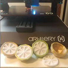 Picture of print of Citrus Box