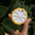 Citrus Box print image