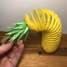 Picture of print of Pineapple Springo (Half Size)