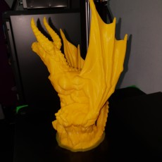 Picture of print of NEW - Wyvern - 32mm scale miniature - Large Monster