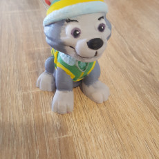 Picture of print of Everest from Paw Patrol