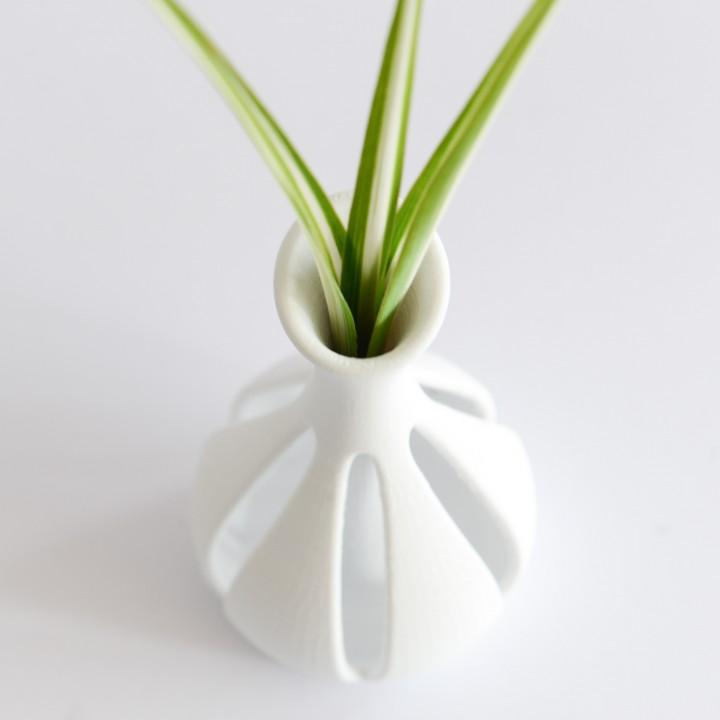 Zephyr Vase