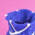 Bulbous Vase image