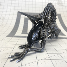 Picture of print of Alien - Xenomorph - Full Figure - 25 CM