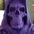 "Skeletor-Bust from ""Masters of the Universe"" (Support Free Model) print image"