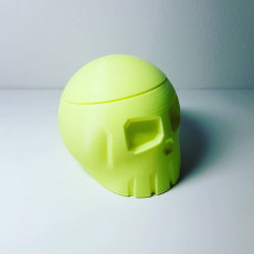 Picture of print of Skull Box with Cranial Lid Этот принт был загружен samster 3d