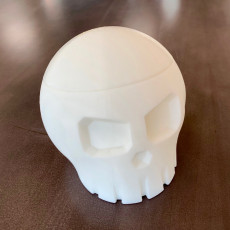 Picture of print of Skull Box with Cranial Lid