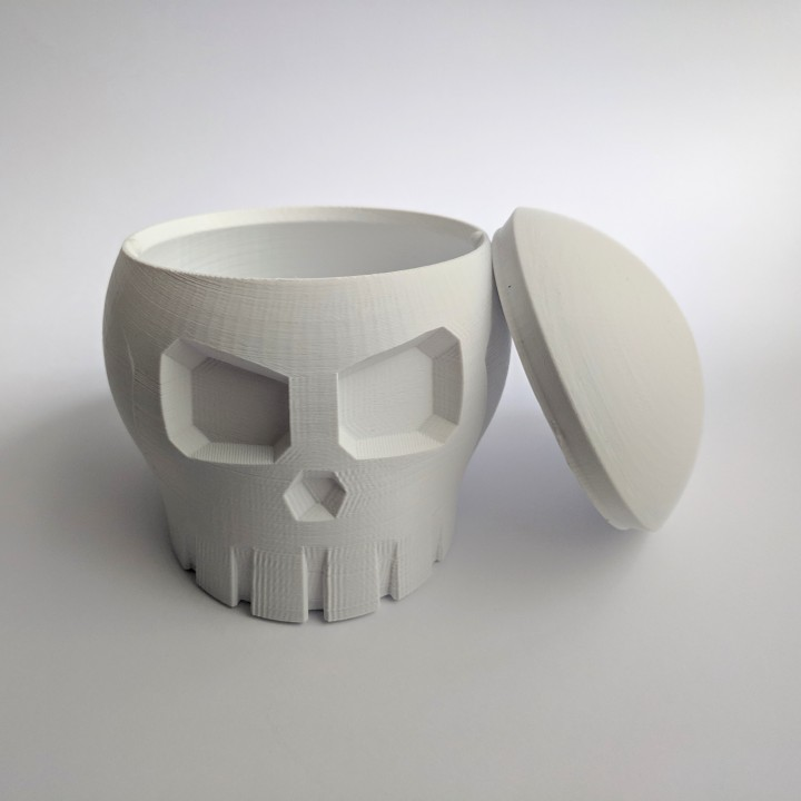 Skull Box with Cranial Lid