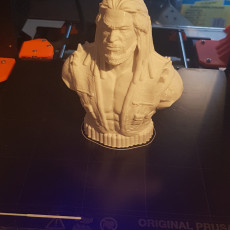 Picture of print of Lobo-Bust from DC Comics