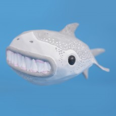 Great Wide Shark // Rejected Animals